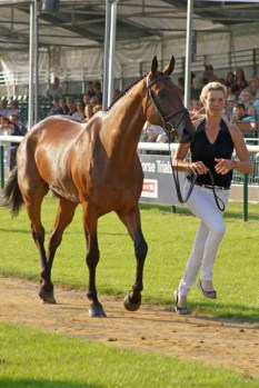 Lucy Jackson (NZL) with Willy Do