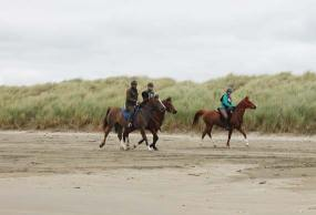 Jo Elder takes Dell Wahid (bay) on his first 40km ride, with Elfi Menpes and Dell Halima leading along the beach.