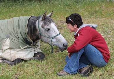 Mt Linton club president Marie Smith shares a quiet moment with her pure Crabbet mare, Aurora Clouded Moon (by Boomori Finale). Cloudy did a 40km at the last ride in October, but Marie was grounded for this ride as she was TD (Technical Delegate).