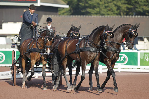 IJsbrand Chardon and his four-in-hand team set the provisional winning score from the onset of the first day of driven dressage at WEG.