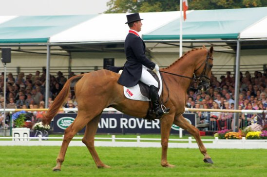 Oliver Townend on Armada (GBR)