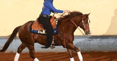 Briana Bartlett and her own Chromed Tejon winning Reserve Champion at the NRHA Futurity Para Reining class in December 2014.
