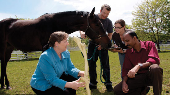 Equine Guelph's Gayle Ecker with students. Ecker has been nominated for the Equine Industry Vision Award.