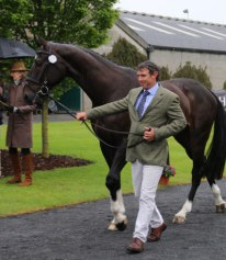 Sam Griffiths with Favorit Z during the trot up before the event. © Jane Thompson