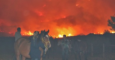 Fire ravaged the premises of equine therapy organisation HorseABCD, and it is now seeking a new home.