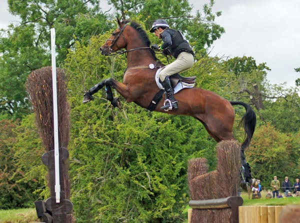 Mark Todd (NZL) and Leonidas II put up a spectacular leap over the Cottesmore Leap. The combination is in seventh place going into the final phase.