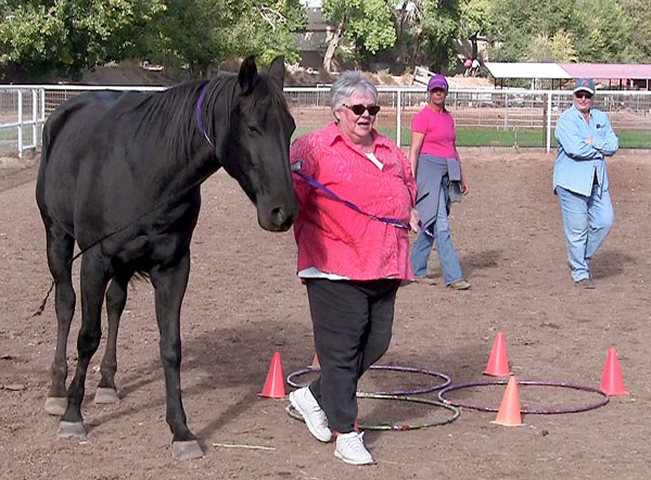 rtist Kathy Pelletier, of Galeria de Corrales, leads a horse around an obstacle during an Equine Assisted Growth and Learning Association equine-assisted psychotherapy group session. Co-facilitators Debi Pierson, left, an equine specialist and NMSU School of Social Work associate professor Wanda Whittlesey-Jerome observe from a distance. Equine Therapeutic Connection volunteered to lead Galeria de Corrales' artist in a group session in return for the fundraiser held by the gallery. Photo: Jane Moorman)