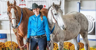 Lindsey Partridge with America's Most Wanted Thoroughbred, Soar (the gray) and Lionofwallstreet.