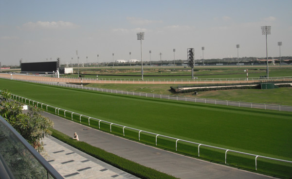 A gardener tends to a hedge by the track. The huge LED screen can be seen further in the distance.