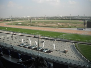 There is no gambling at Meydan, but these cars were up for grabs in a sweepstakes draw the following day.