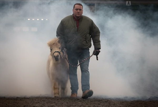 """Some of World Horse Welfare's rescue horses star in the charity's """"Join the charge"""" video promoting the CARE About Laminitis study."""