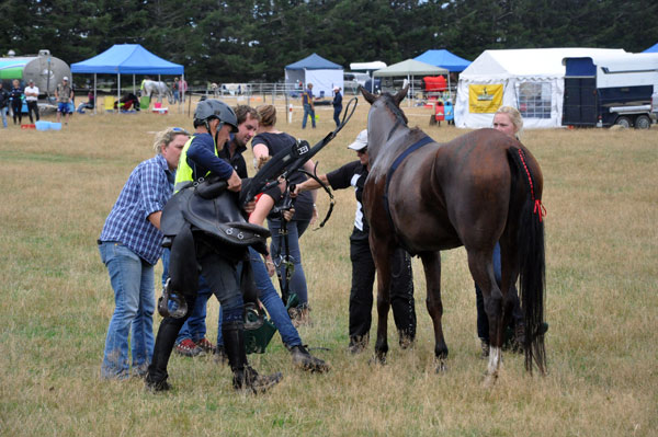 Helpers and strappers assist Philip Graham and Rosewood Bashir after their win in the 160km championship.