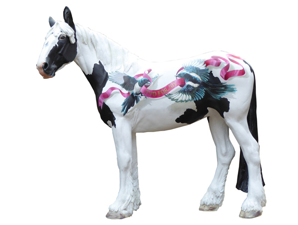 Adoption horse Magpie is immortalised by Jennifer Bell, with his bird namesake and showing achievements recognised.
