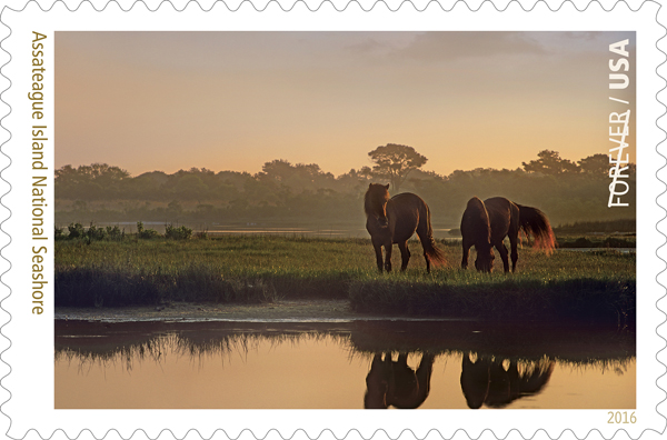 An image by Tim Fitzharris, of Fayetteville, Arkansas, features on the new stamp celebrating US national parks. Photo: US Postal Service
