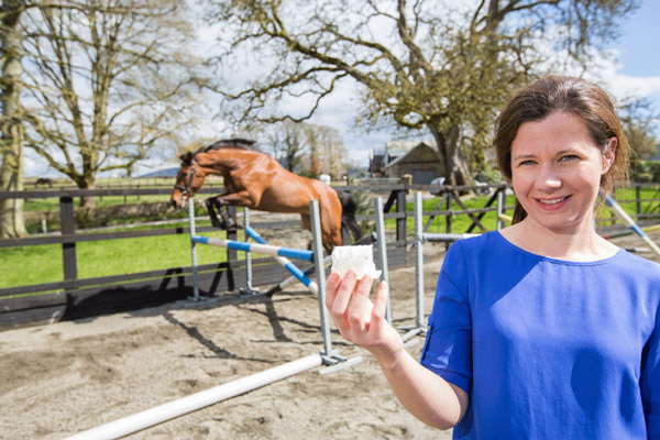 The new biomaterial was used in the stifles of a showjumping thoroughbred named Beyonce to repair damage.