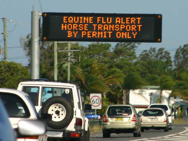 Australia's biosecurity officials will be watching any moves by Equestrian Australia over WEG 2022.
