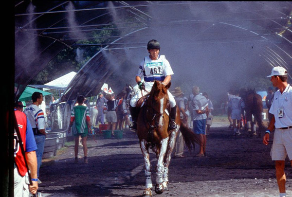 Misting systems have been used in hot and humid areas to help cool down sport horses during competitions.