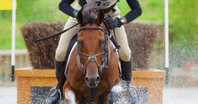 Sir Mark Todd, pictured withBadminton contenderLeonidas II at the World Equestrian Gamesin2014, is third in the world eventing rankings.