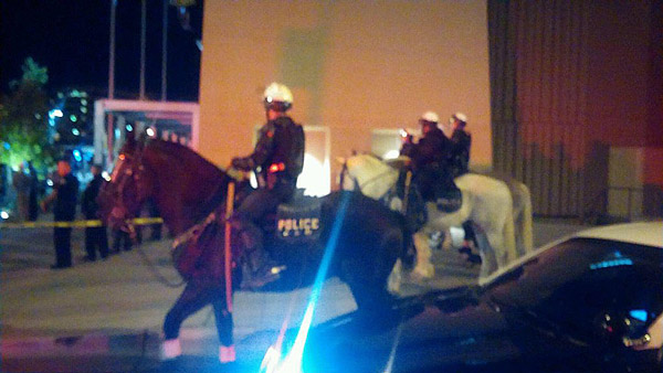 Albuquerque police horses in action on Tuesday night. Photo: Albuquerque Police/Twitter