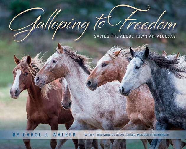 galloping-to-freedom630
