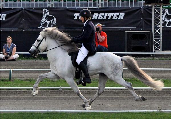 Smooth action: An ambling Icelandic pony. Photo: Monika Reissmann