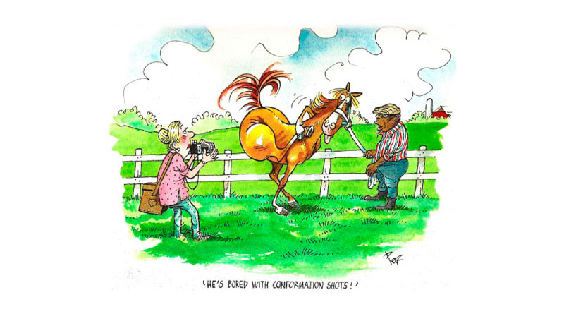 Honor For Famed Horse Racing Cartoonist Peb