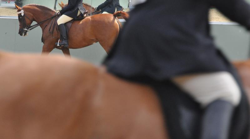 rider-show-800-445
