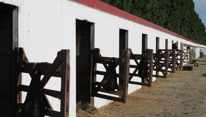 stables-stock-800-445