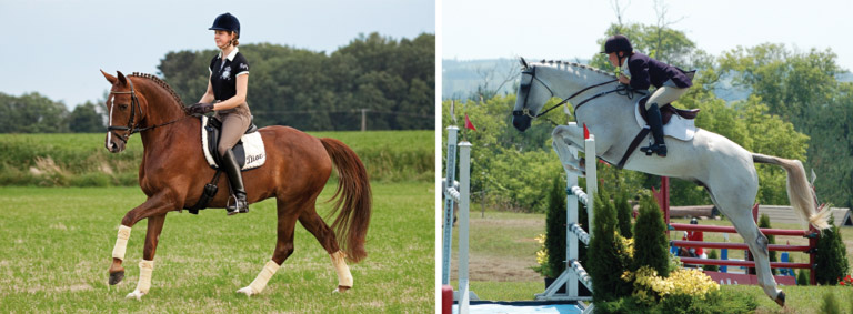 Is it wrong to jump your horse in a dressage saddle? - Horsetalk co nz