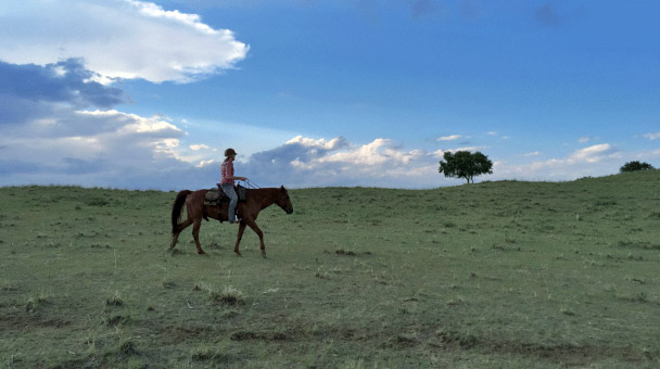 Anna Twinney trail riding in Mongolia.