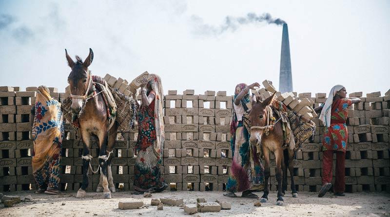 Loading bricks from a kiln in India.