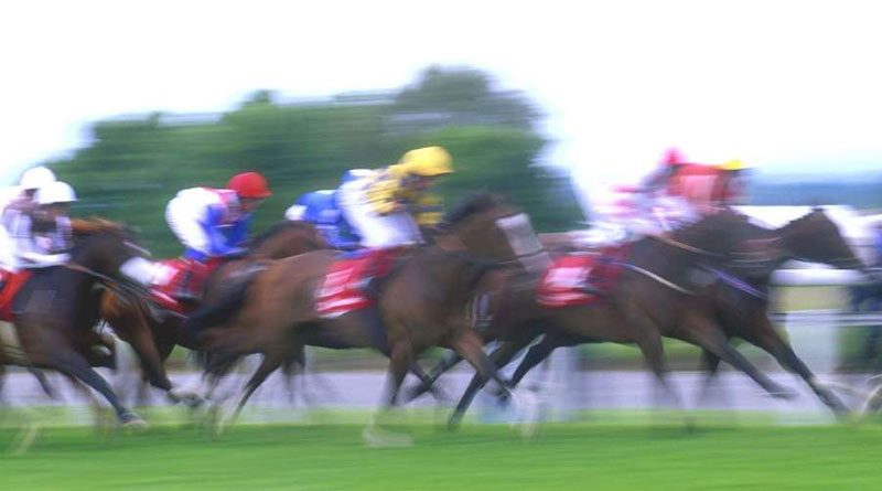 The betting behaviour of race-goers in Finland have been scrutinised by researchers.