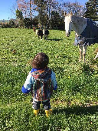 Ian Robinson's son, Bodhi, in New Zealand.