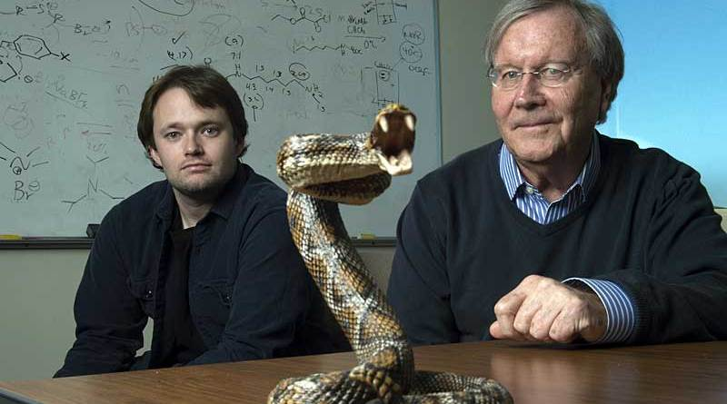 Chemistry professor Ken Shea, right, and doctoral student Jeffrey O'Brien have developed a broad-spectrum snake venom antidote. Photo: Steve Zylius / University of California, Irvine