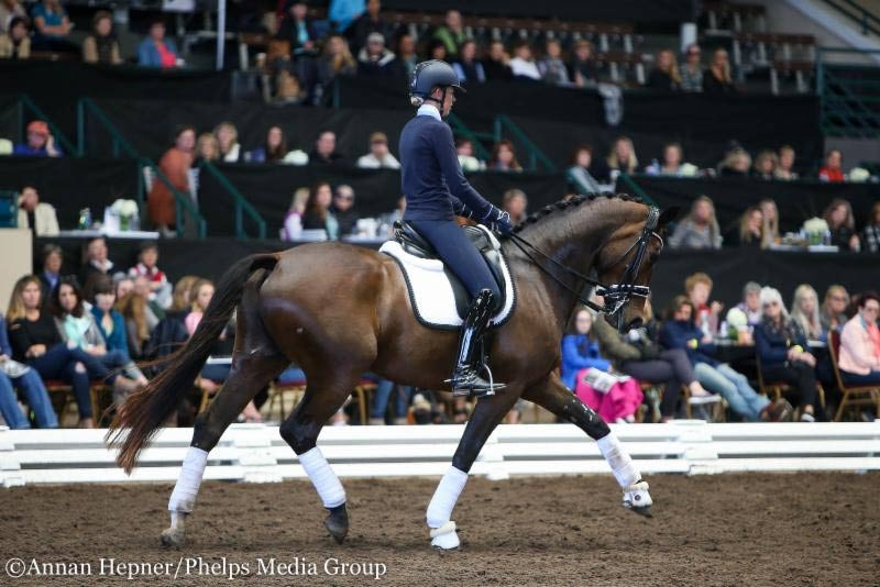 Small tour combination Carly Taylor-Smith and the 7-year-old Oldenburg gelding, Rosalut NHF.
