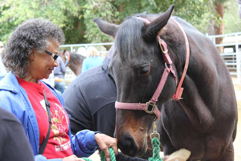 "Charlotte Driver said the horse programe provided a sense of accomplishment and hope. ""We have hope no matter what happens — we'll never give up."" Photo: Elaine Chan"