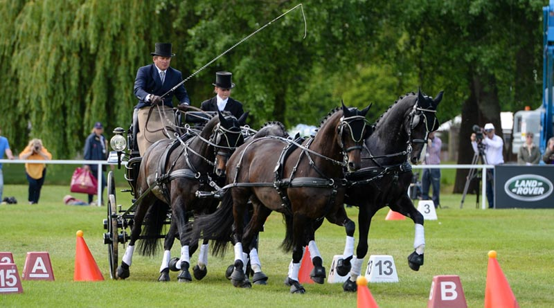 Boyd Exell took out Windsor'sLand Rover International Driving Grand Prix for the eighth time.