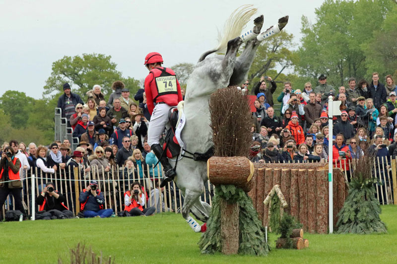 Paul Tapner and Bonza King of Rouges come to grief at Badminton.