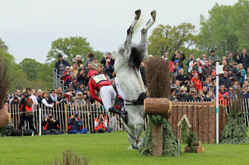 Paul Tapner and Bonza King of Rouges come to grief at Badminton in 2017.