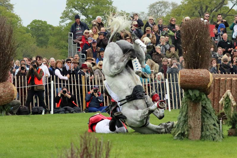 Paul Tapner and Bonza King of Rouges come to grief at Badminton in May this year. Miraculously, both walked away from the accident.