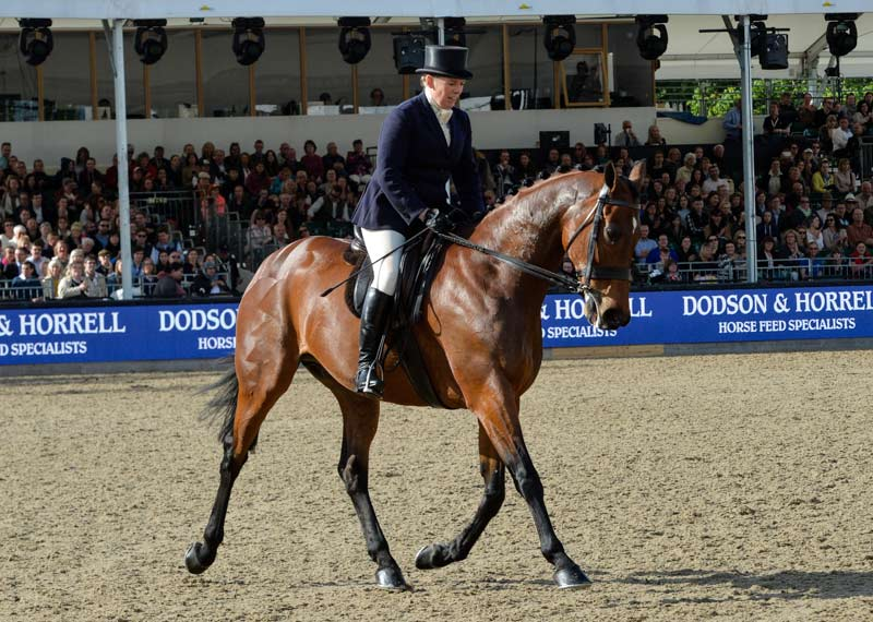 Katie Jerram-Hunnable riding Barber's Shop won the Supreme Ridden Showing Championship at the Royal Windsor Horse Show.