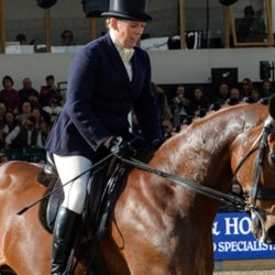 """Special"" Windsor for Queen with top show horse's retirement ceremony"