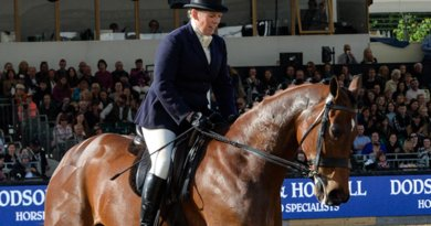 """""""Special"""" Windsor for Queen with top show horse's retirement ceremony"""