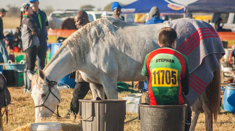 The completion rate in the South African event was nearly 80 percent.