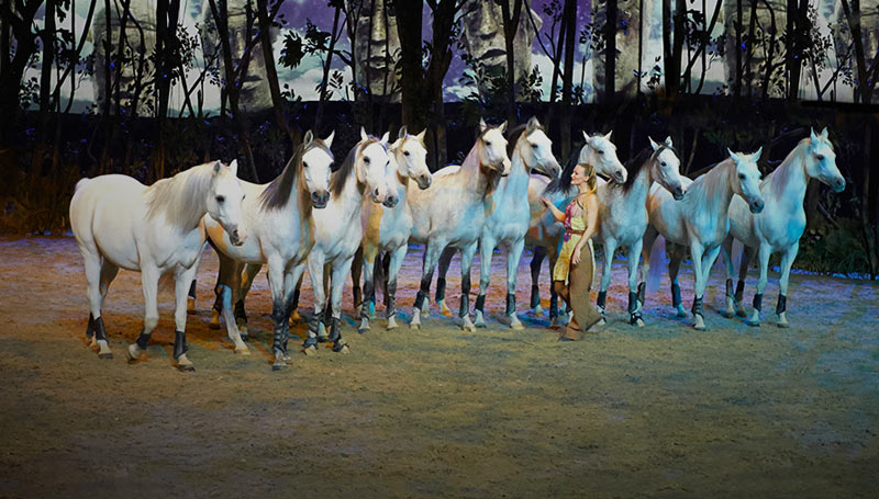 Inside Cavalia: The world's biggest equine touring show revealed ...