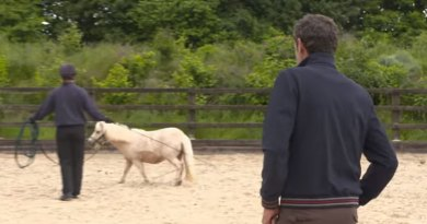 Mark Todd puts Pamela through her paces during a cross-country training session in preparation for the Burghley Horse Trials late this month.