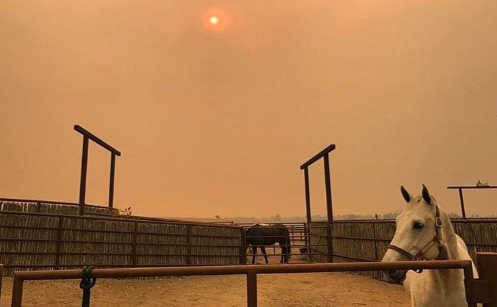 Wildfires continue to spread and cause devastation in California.