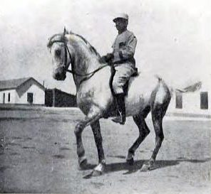Étienne Beudant and Mabrouk in piaffe.