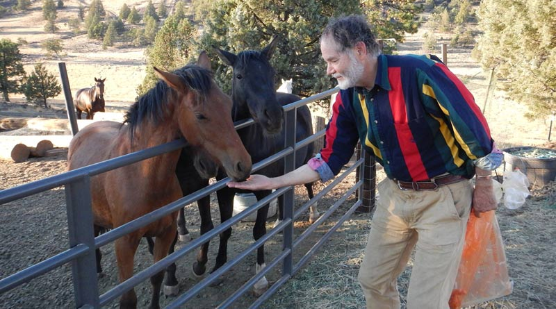 A wild filly accept a carrot from Craig Downer at Wildhorse Ranch.