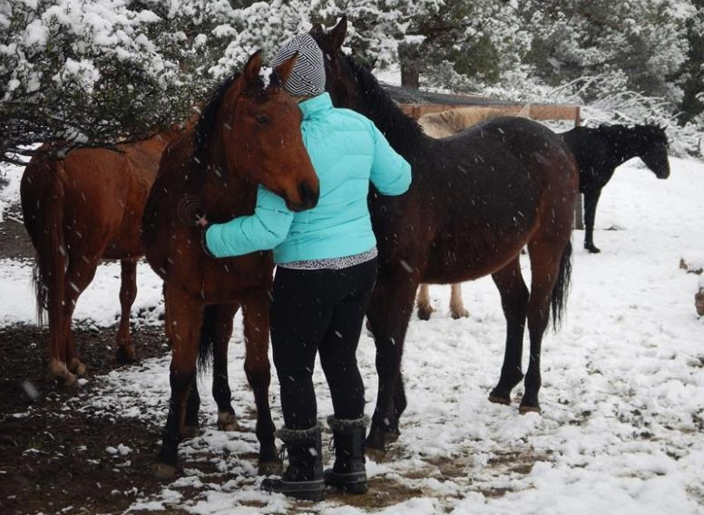 Bill Simpson pays tribute to his married adult woman as well as partner inward Wild Horse Ranch Effects of wildfire smoke claim life of wild Equus caballus heroine